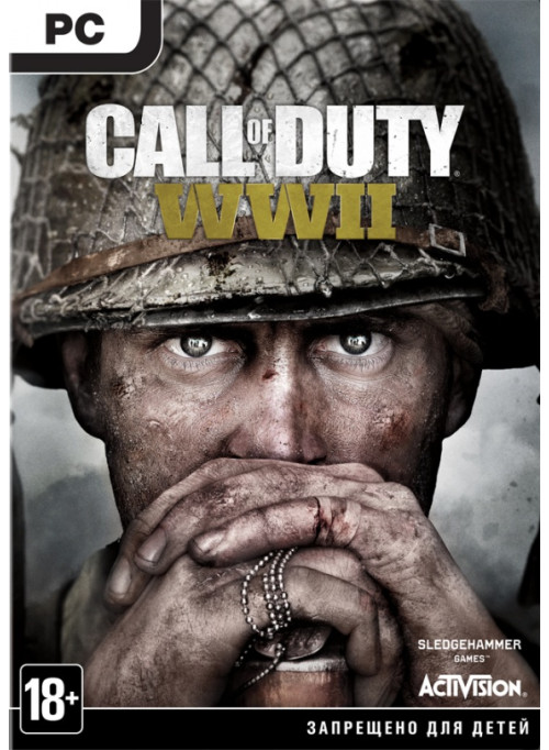 Call of Duty: WWII Box (PC)